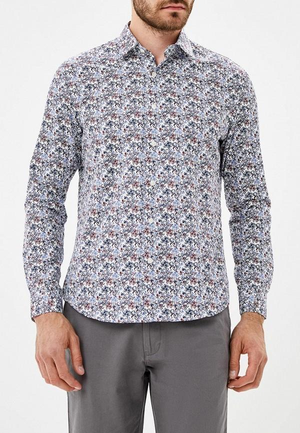 Купить Рубашка Bawer, MP002XM23VWB, разноцветный, Осень-зима 2018/2019