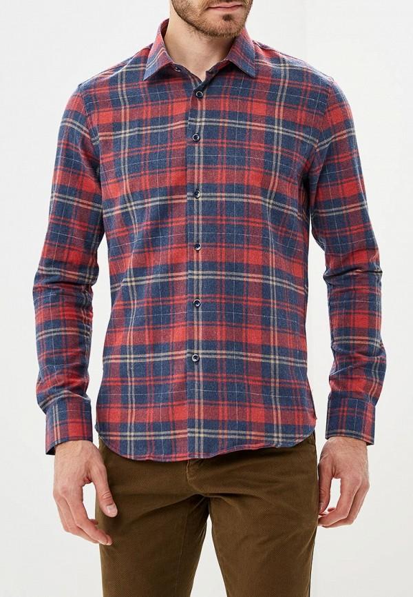 Рубашка Biriz Biriz MP002XM23WH3 biriz w15042396356