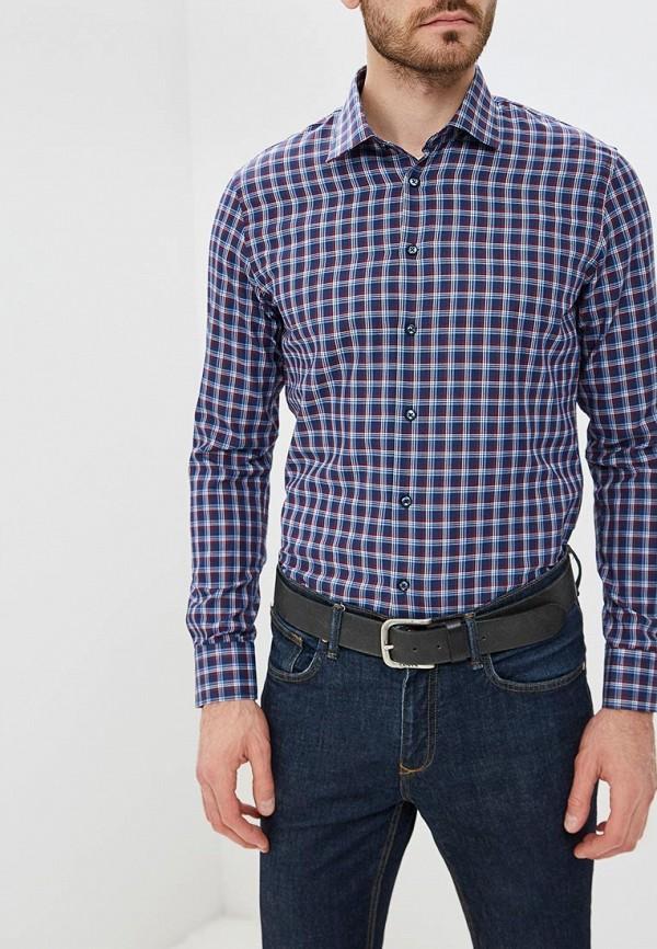 Рубашка Biriz Biriz MP002XM23XUV biriz w15042396356