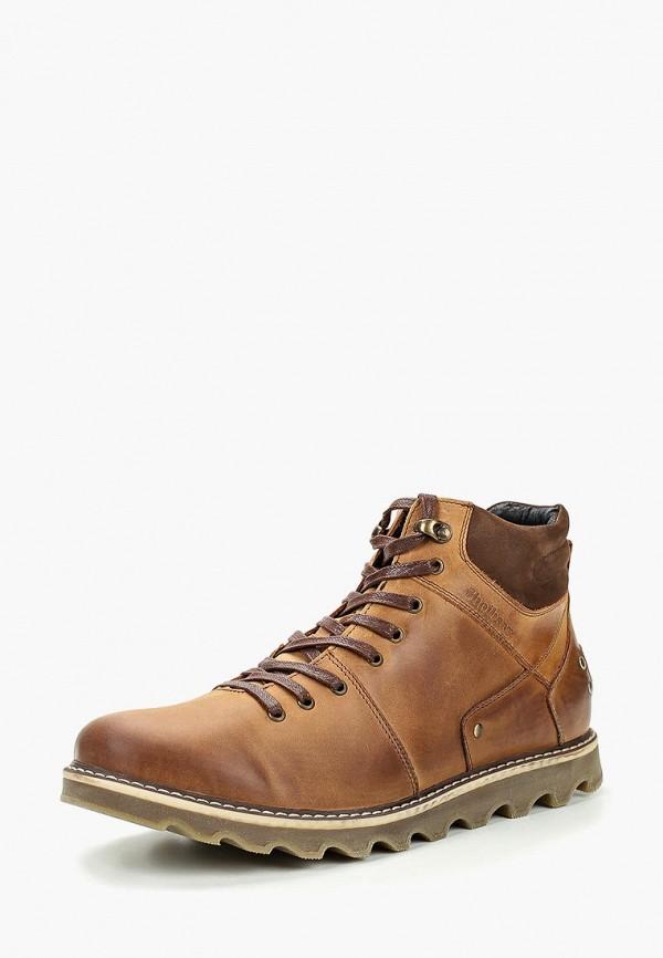 Купить Ботинки Shoiberg, mp002xm23y53, коричневый, Осень-зима 2017/2018
