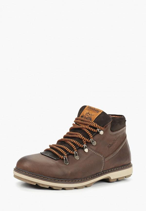 Купить Ботинки Shoiberg, mp002xm23y54, коричневый, Осень-зима 2017/2018
