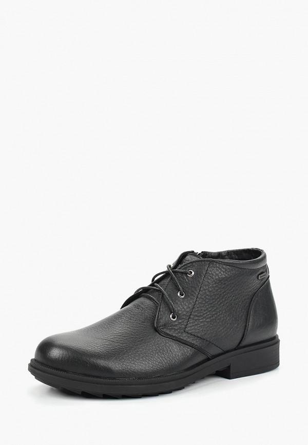 Купить Ботинки Shoiberg, mp002xm23y5d, черный, Осень-зима 2017/2018