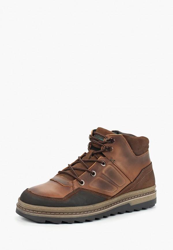 Купить Ботинки Shoiberg, mp002xm23y5h, коричневый, Осень-зима 2017/2018