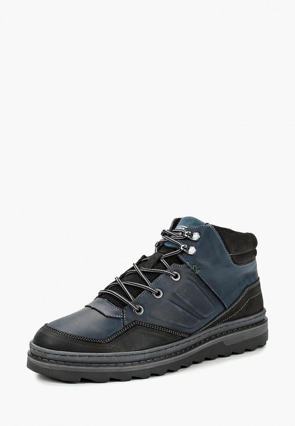 Купить Ботинки Shoiberg, mp002xm23y5l, синий, Осень-зима 2017/2018