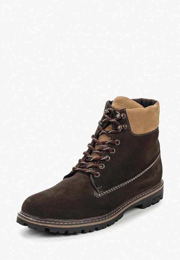 Купить Ботинки Mr.Dan, mp002xm23yr2, коричневый, Осень-зима 2018/2019