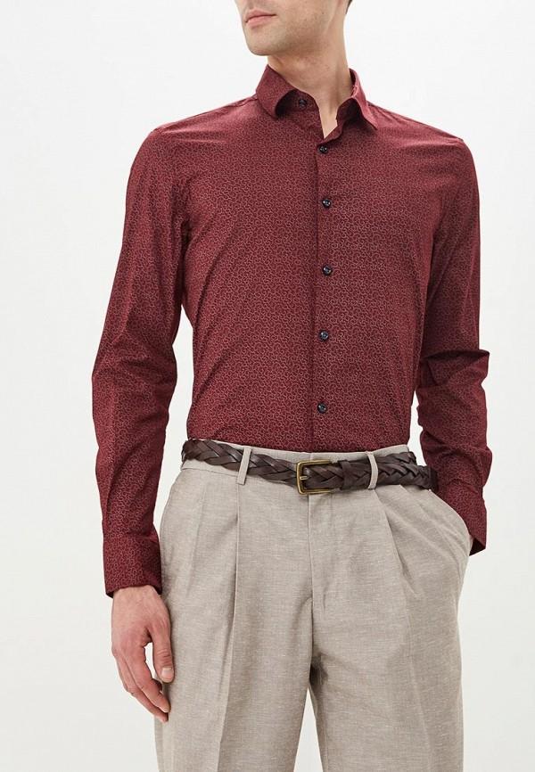 Купить Рубашка Bawer, Regular Fit (Полуприталенная), mp002xm23yt9, бордовый, Весна-лето 2018