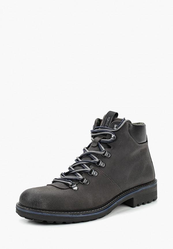 Ботинки Igi&Co Igi&Co MP002XM23Z2S цены онлайн