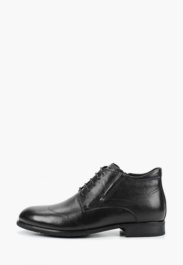 цена Ботинки Dino Ricci Select Dino Ricci Select MP002XM242NP онлайн в 2017 году