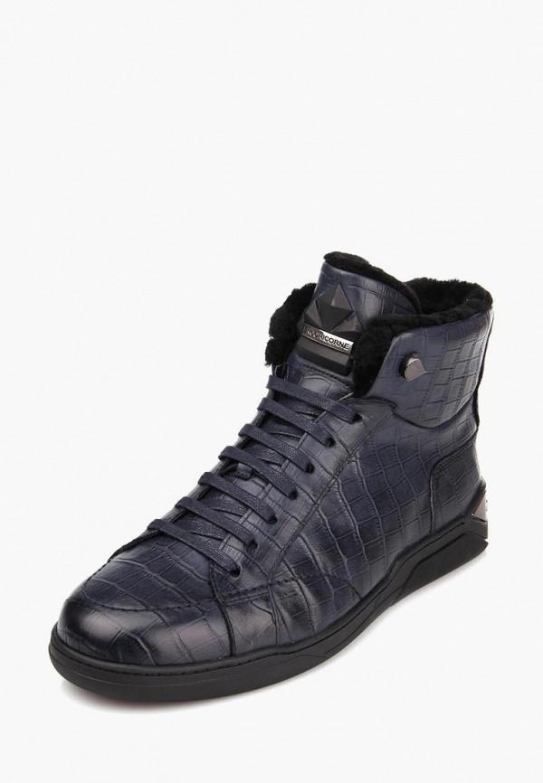 мужские ботинки ditto, синие