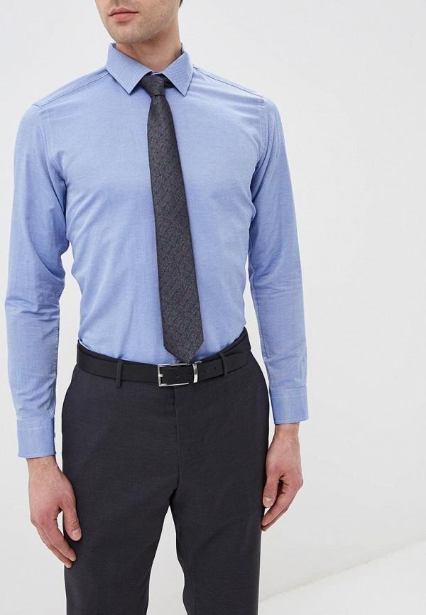 Купить Мужскую рубашку Karflorens синего цвета