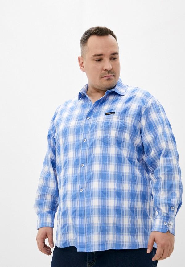мужская рубашка с длинным рукавом armaron, синяя