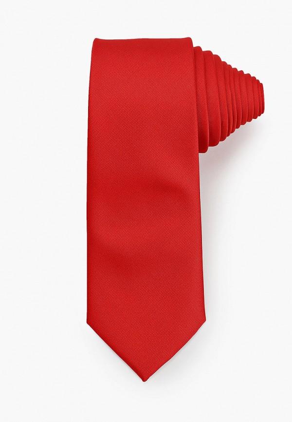 мужские галстуки и бабочки bazioni, красные