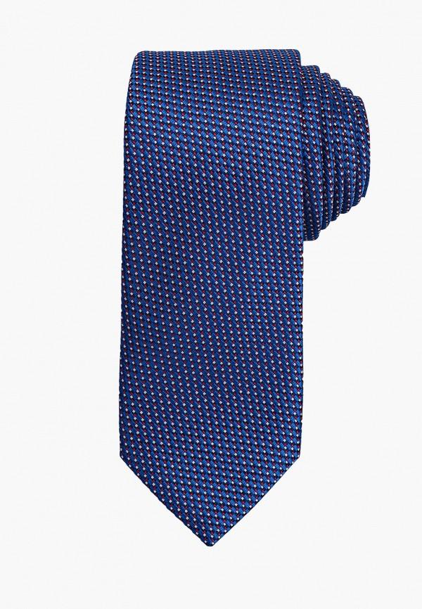 мужские галстуки и бабочки bazioni, синие