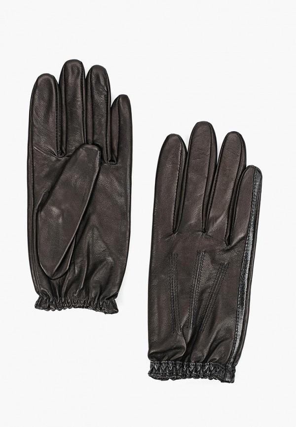 Перчатки Eleganzza Eleganzza MP002XW01GMV