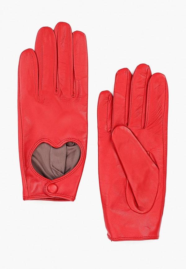 Перчатки Labbra Labbra MP002XW01GPX перчатки labbra labbra la886dwxhw90