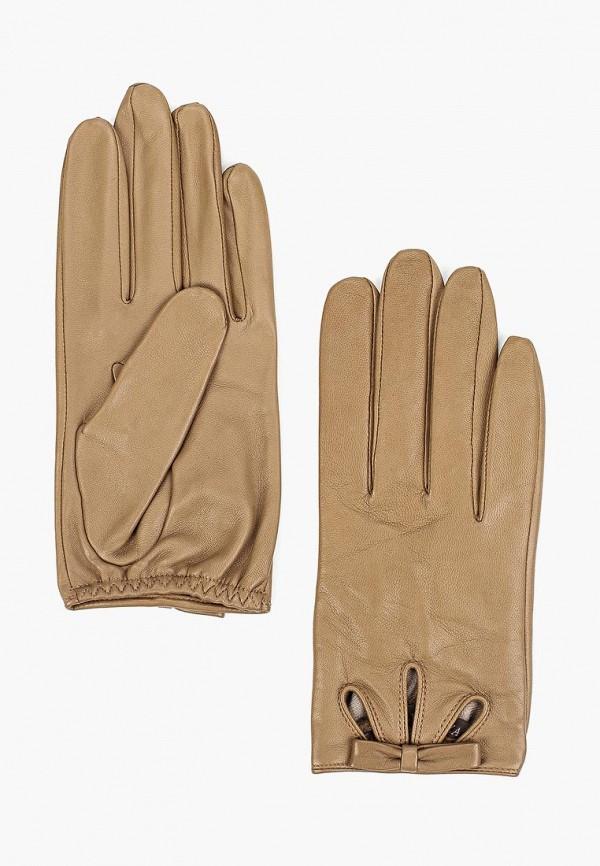 Перчатки Eleganzza Eleganzza MP002XW01GRB