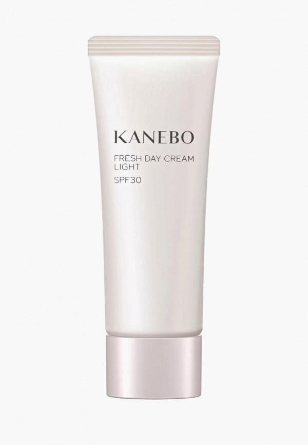 Крем для лица Kanebo Kanebo MP002XW021GZ kanebo evita3040 180ml 130ml