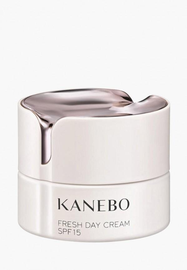 Крем для лица Kanebo Kanebo MP002XW021H9 kanebo evita3040 180ml 130ml