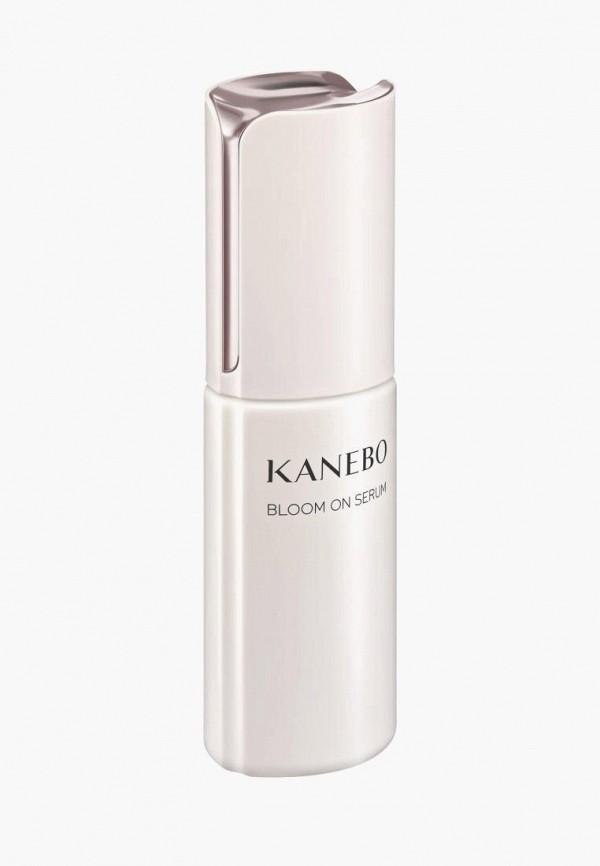 Сыворотка для лица Kanebo Kanebo MP002XW021JP kate kanebo