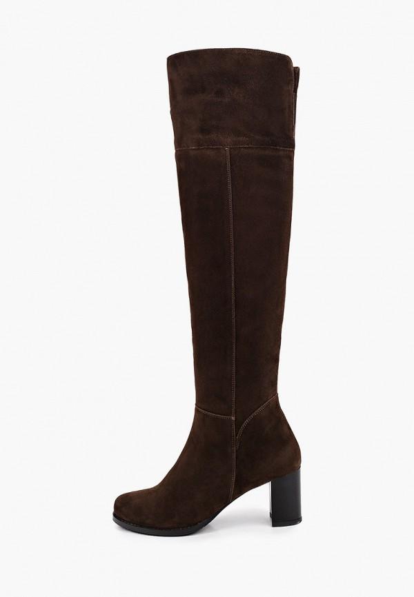 женские ботфорты enzo logana, коричневые