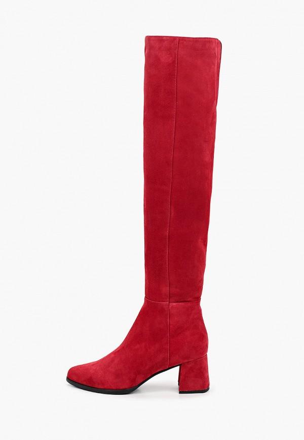 женские ботфорты argo, красные