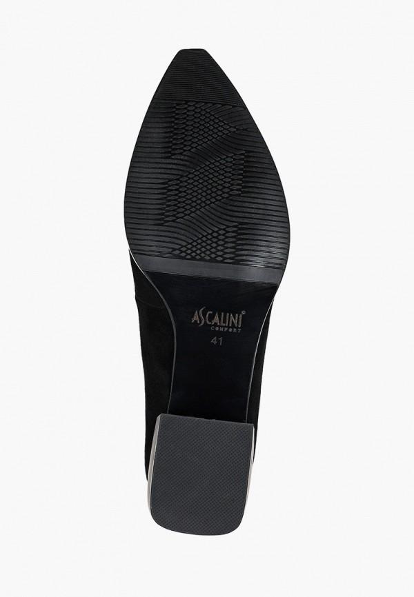 Туфли Ascalini MP002XW058W8R410 фото 5