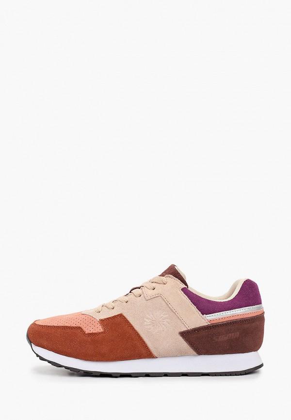 женские низкие кроссовки sigma, разноцветные