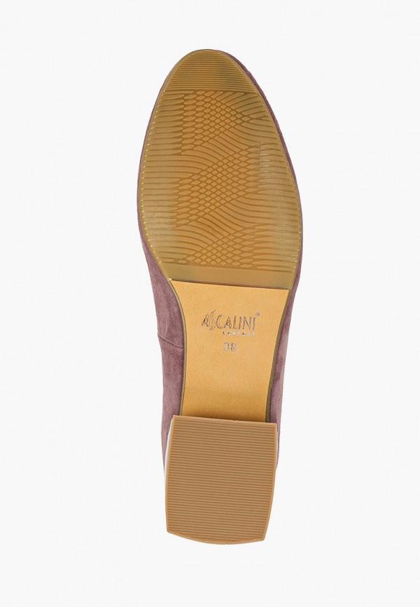 Туфли Ascalini MP002XW05Y6FR390 фото 5