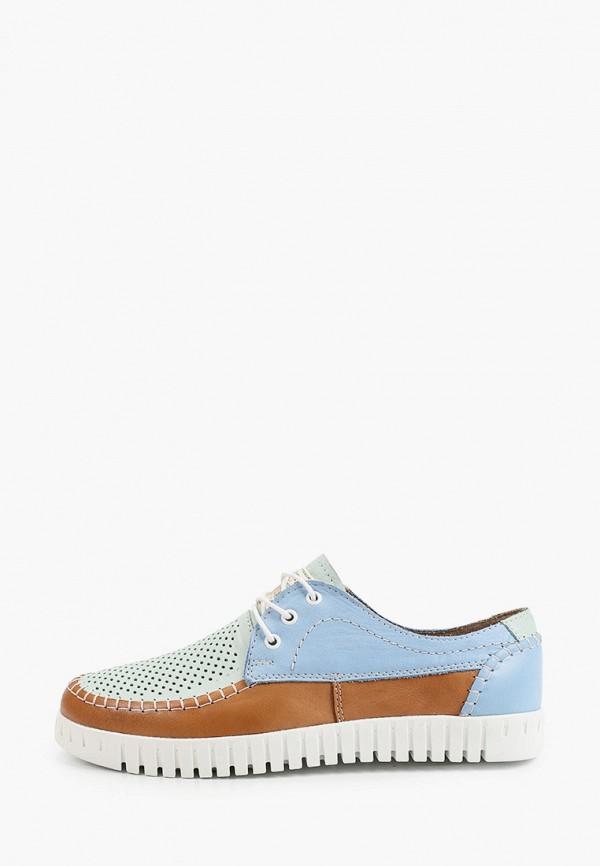 женские низкие ботинки shoiberg, разноцветные