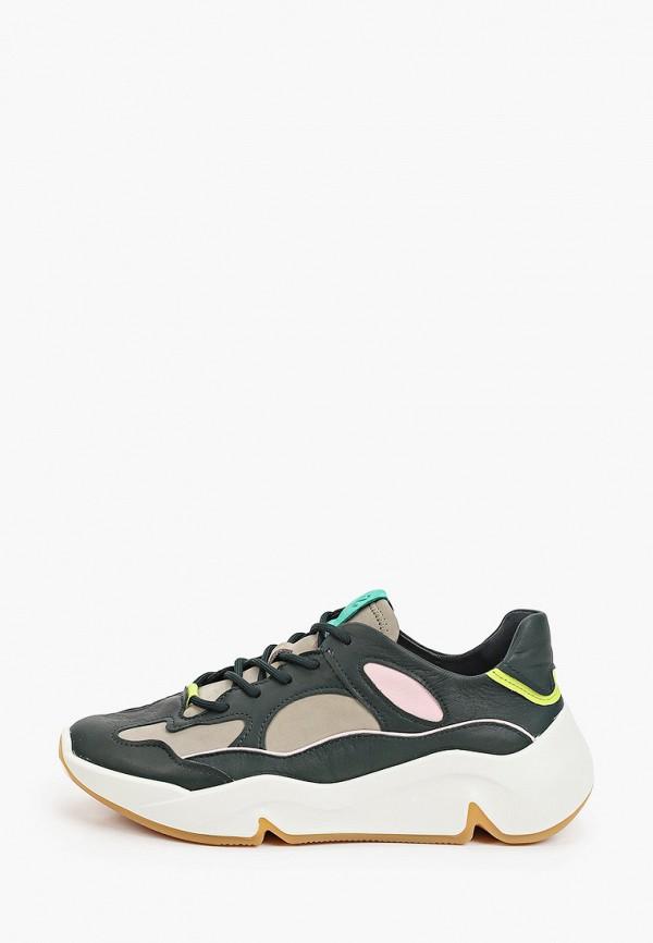 женские низкие кроссовки ecco, разноцветные