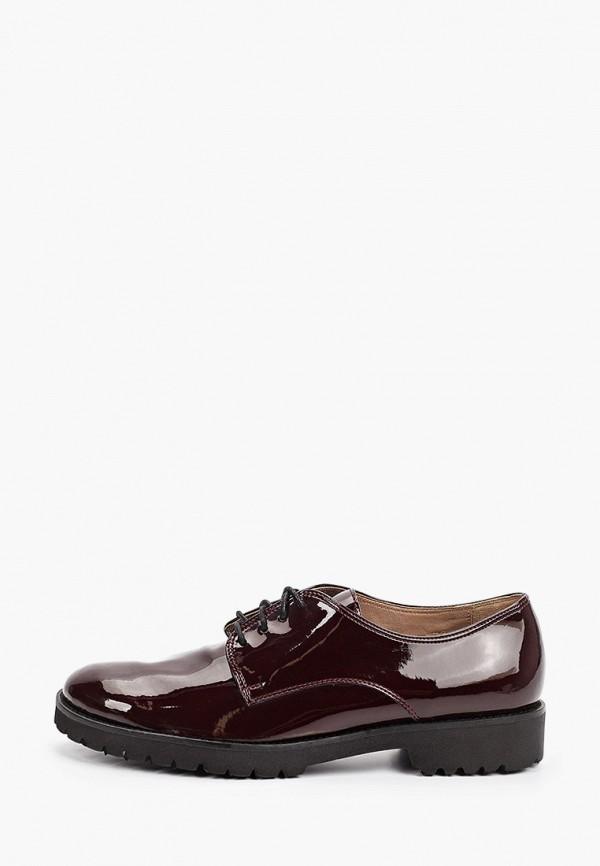 женские ботинки-оксфорды enzo logana, бордовые