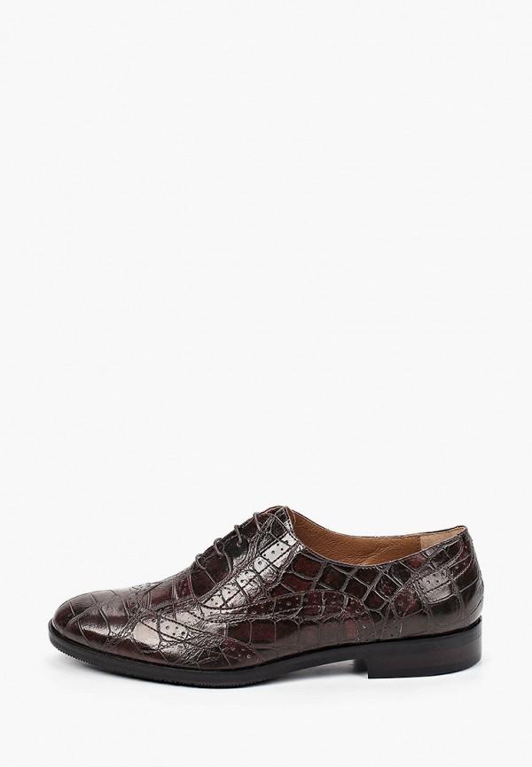 женские ботинки-оксфорды enzo logana, коричневые