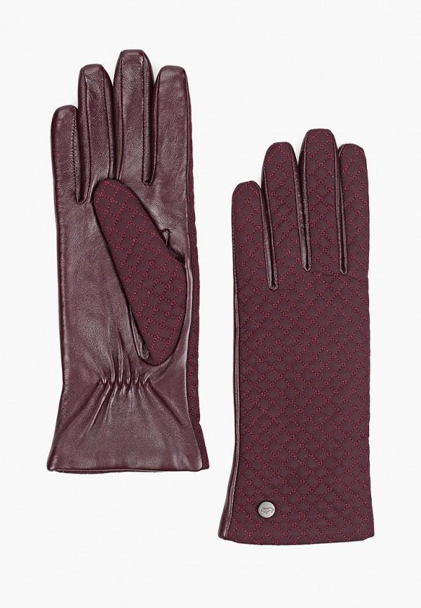 женские текстильные перчатки labbra, фиолетовые