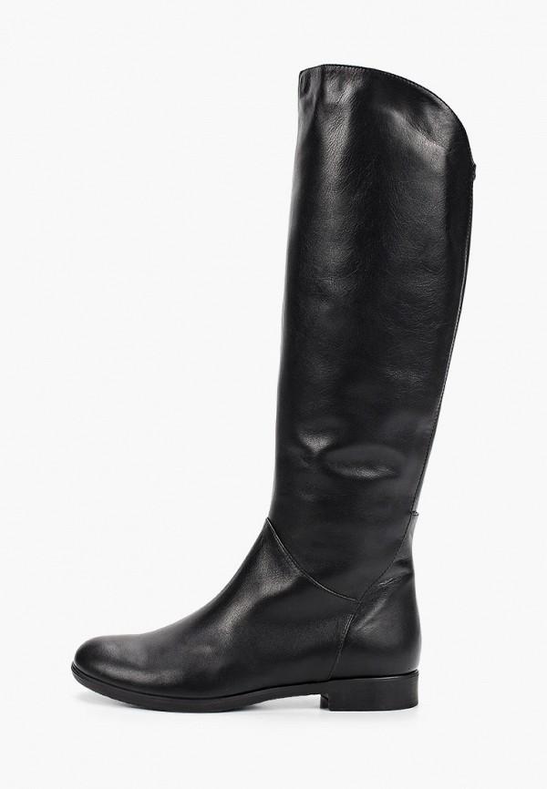 женские сапоги argo, черные