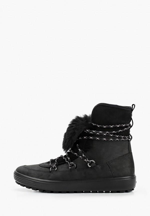 Ботинки Ecco Ecco MP002XW0H9LY цена