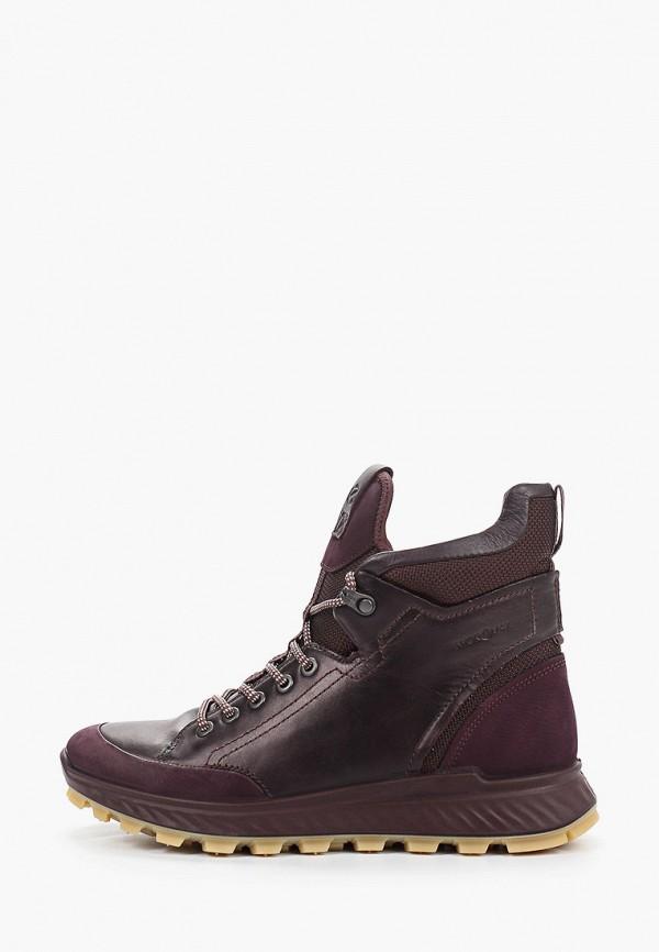 Ботинки Ecco Ecco MP002XW0H9NM цена