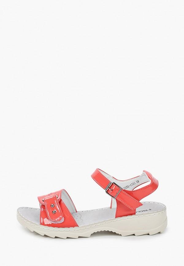 женские сандалии t.taccardi