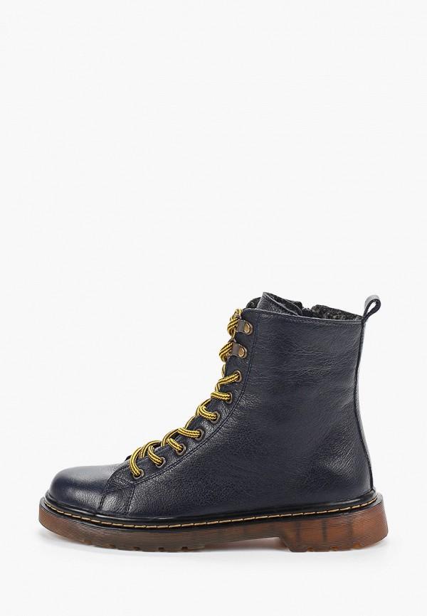 женские высокие ботинки shoiberg, синие