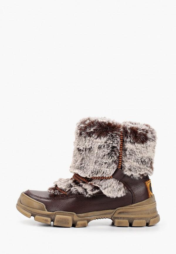 женские высокие ботинки shoiberg, коричневые