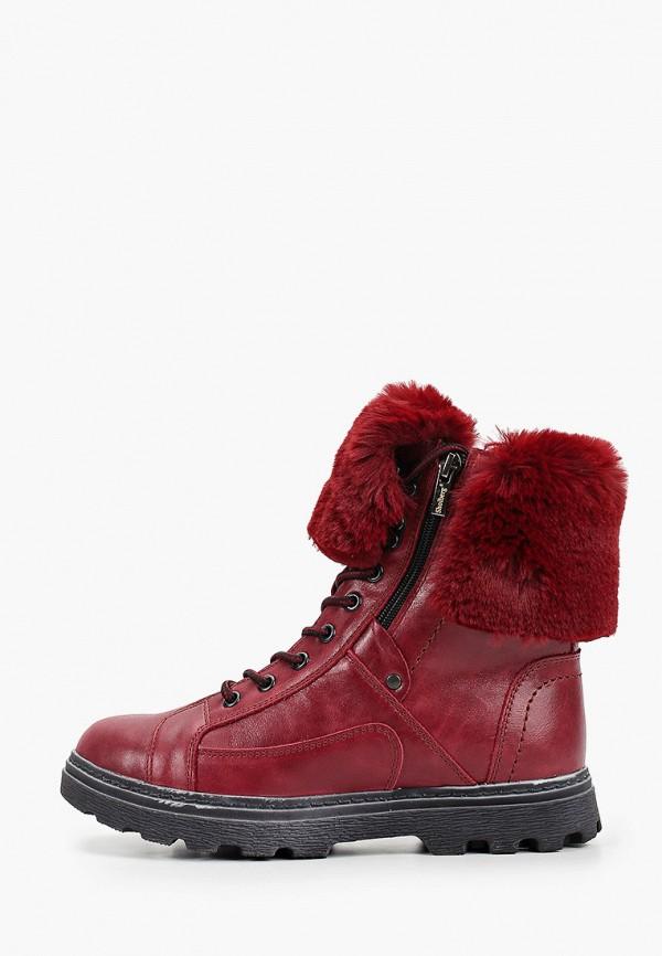 женские высокие ботинки shoiberg, бордовые