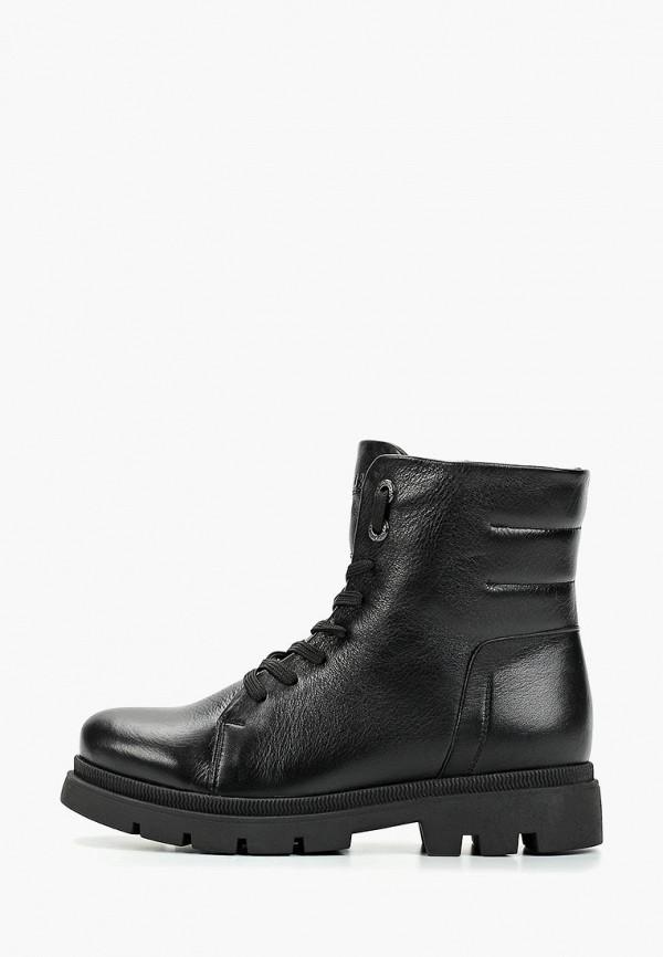 Ботинки Shoiberg Shoiberg MP002XW0RCIB ботинки shoiberg shoiberg mp002xw18wea