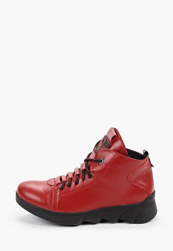где купить Ботинки Shoiberg Shoiberg MP002XW0RCIS дешево