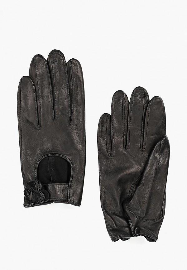 Перчатки Eleganzza Eleganzza MP002XW0XH20