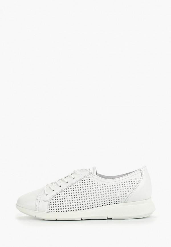 женские кроссовки shoiberg, белые