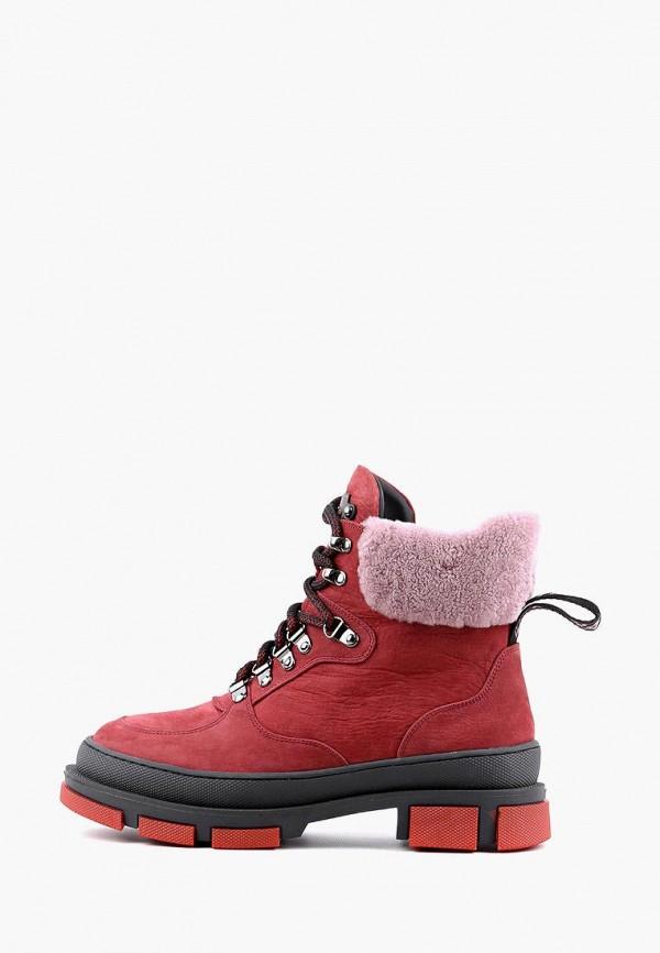 женские ботинки sasha fabiani, бордовые