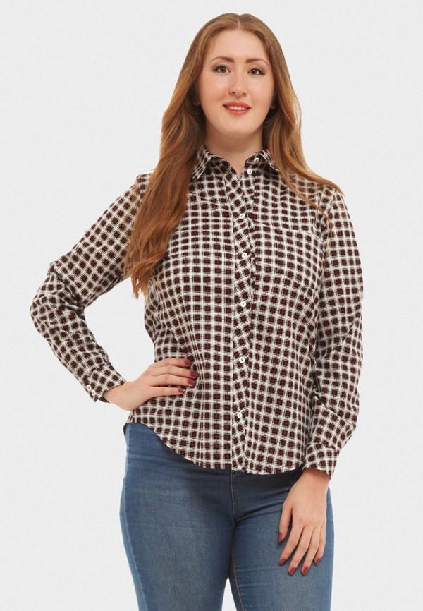 Купить Рубашка XLady, mp002xw16p15, разноцветный, Весна-лето 2018