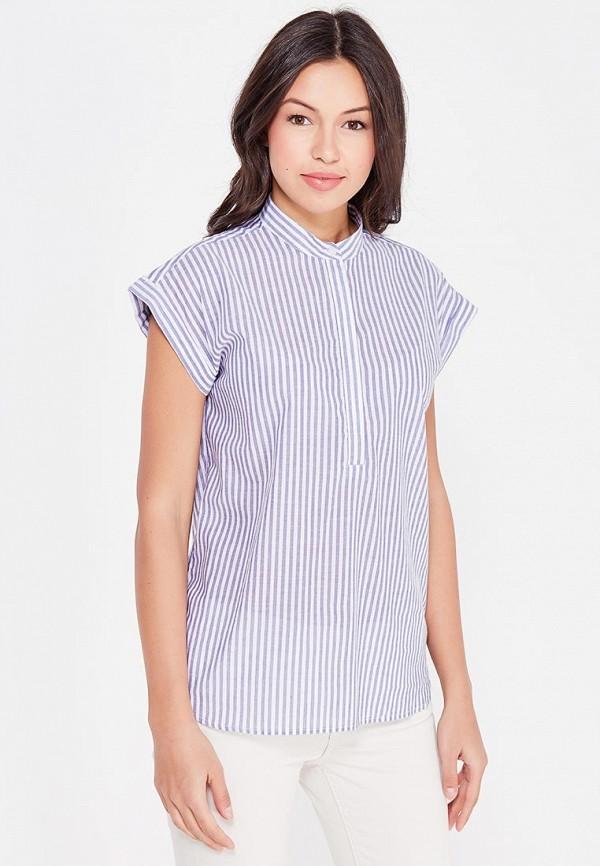 Рубашка Cocos, MP002XW1AU8Y, голубой, Осень-зима 2017/2018  - купить со скидкой