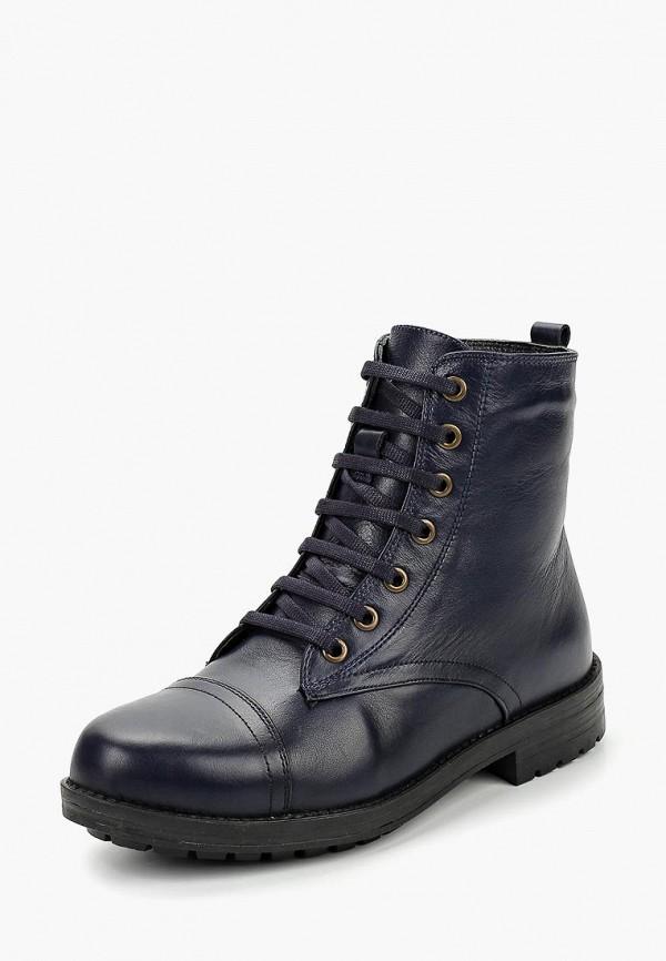 Купить Ботинки Alessio Nesca, MP002XW1GREW, синий, Осень-зима 2016/2017