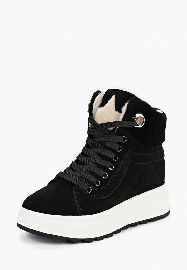 Купить Ботинки Sprincway, mp002xw1h0ny, черный, Осень-зима 2017/2018