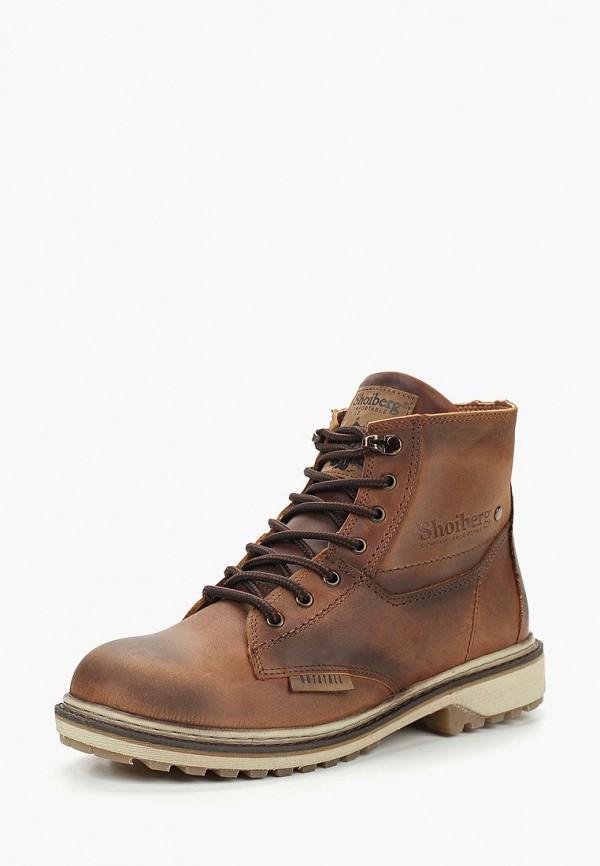 Купить Ботинки Shoiberg, mp002xw1h1d2, коричневый, Осень-зима 2017/2018